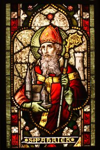 Saint Patrick. Photo: Simon Carrasco