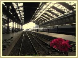 Gar de Lyon. Foto: Pantchoa