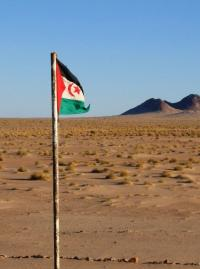 Flag of the Saharawi Arab Democratic Republic. Photo: Western Sahara Project