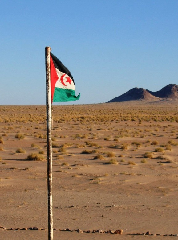 Western Sahara: The uprising in El Aayiún – our position