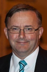 Anthony Albanese. Photo: Toby Hudson