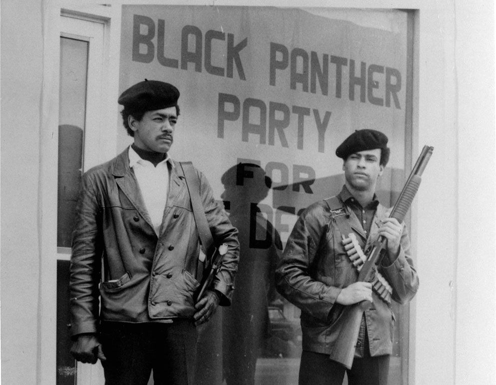 Lessons from the History and Struggle of the Black Panther ...
