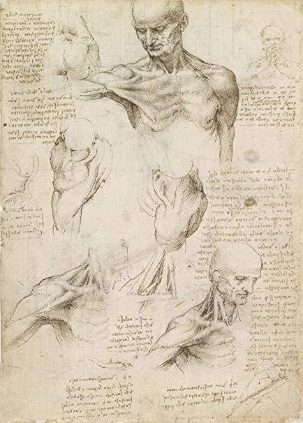 Leonardo Da Vinci: Người nghệ sĩ, nhà tư tưởng và nhà cách mạng