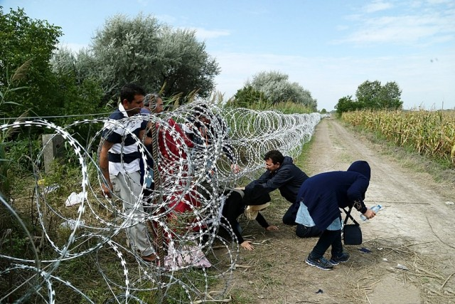Migrants in Hungary wikimedia
