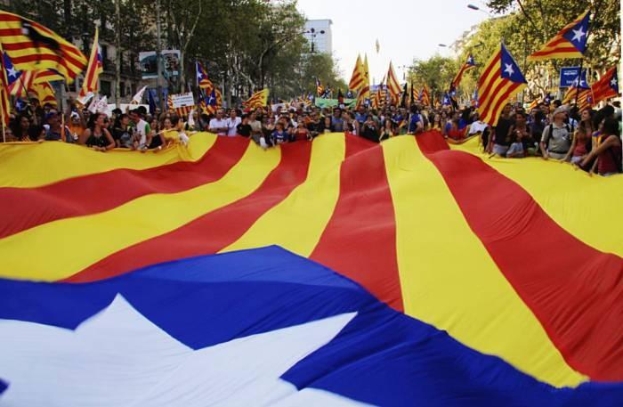 Catalan independence demo 1 Image Jordi Joan Fabrega