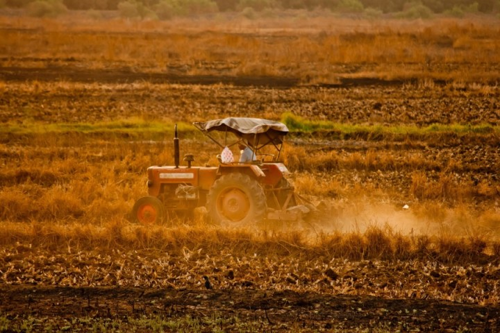 Indian high tech farming Image Pixino