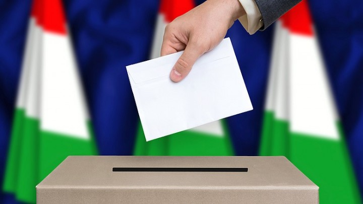 Hungary elections ballot Image fair use