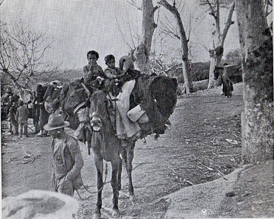 Chidren leaving their homes in Malaga Public Domain
