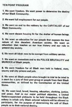 black-panthers-6