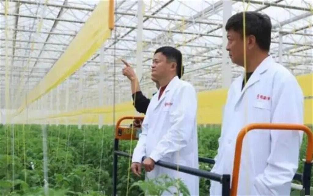 马云如今已经成为中共当局最偏好追打的对象。//图片来源:微博